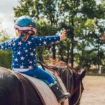 Come scegliere un box per cavalli in legno