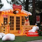 I migliori addobbi natalizi per una casetta in legno
