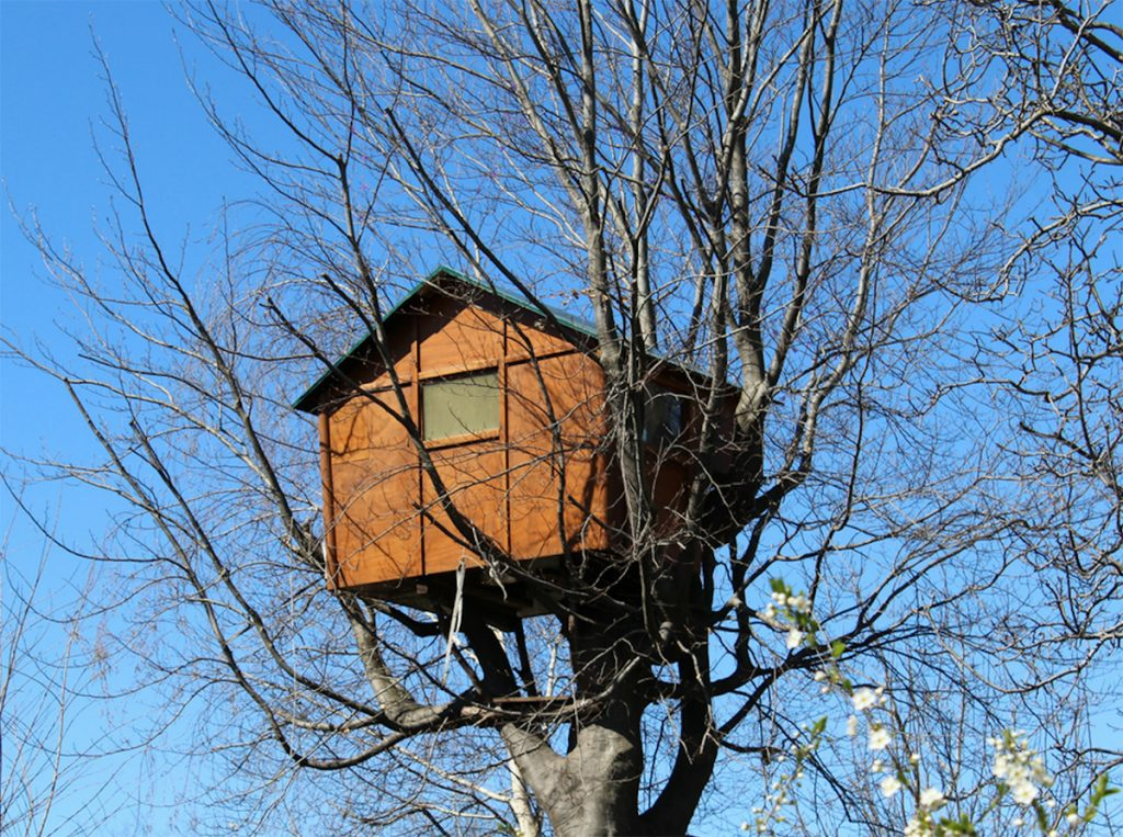 foto-casetta-in-legno-su-albero